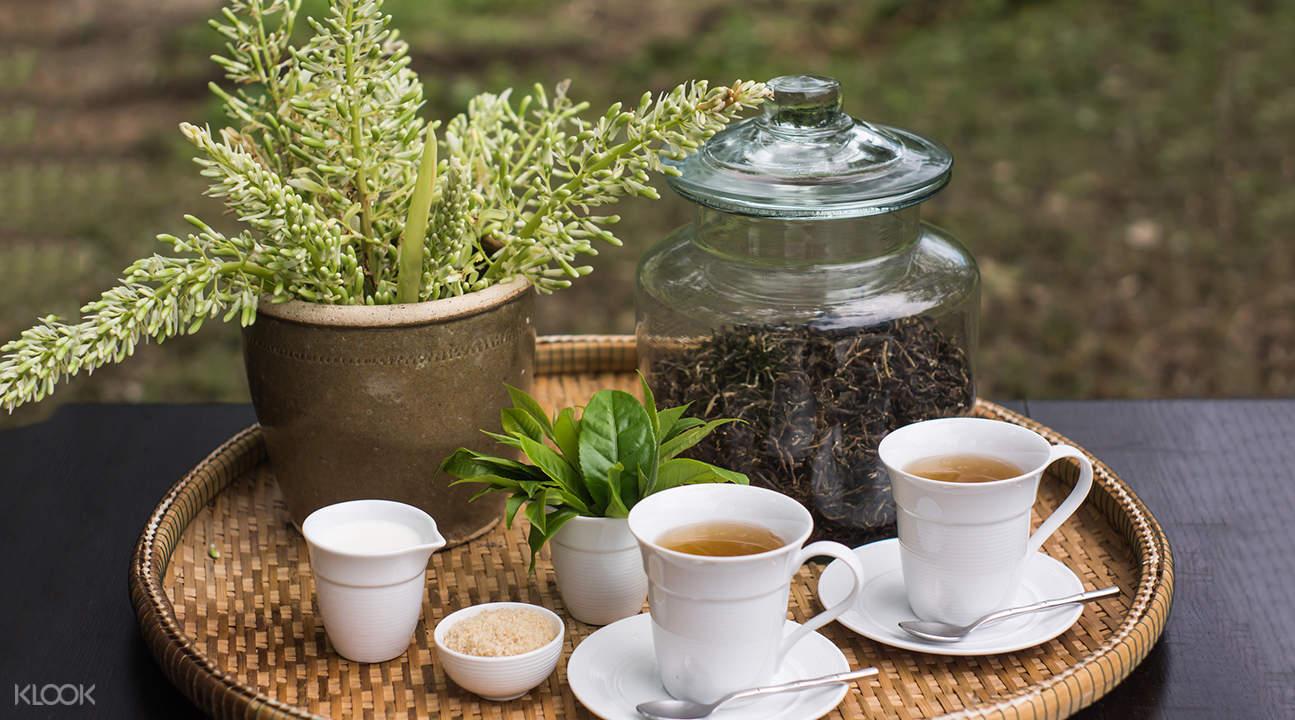 araksa tea garden set