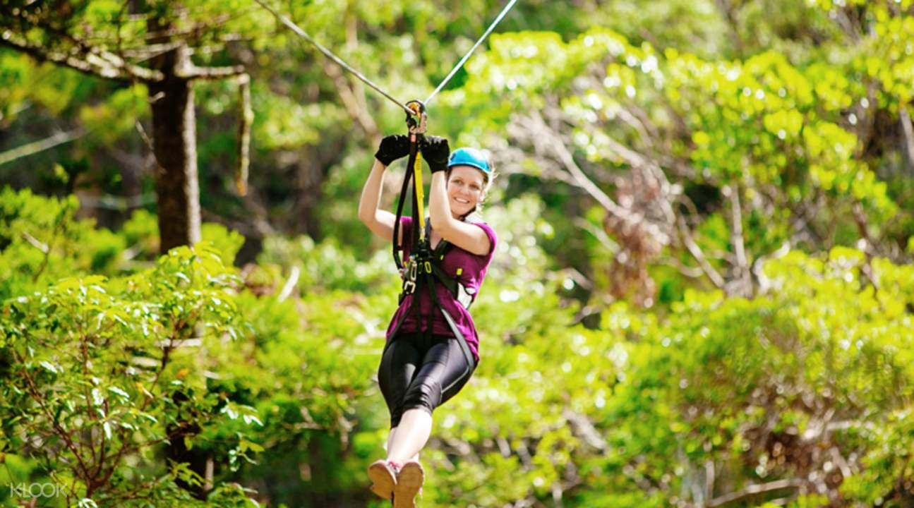 Gold Coast Canyon Flyer Guided Zipline Tour