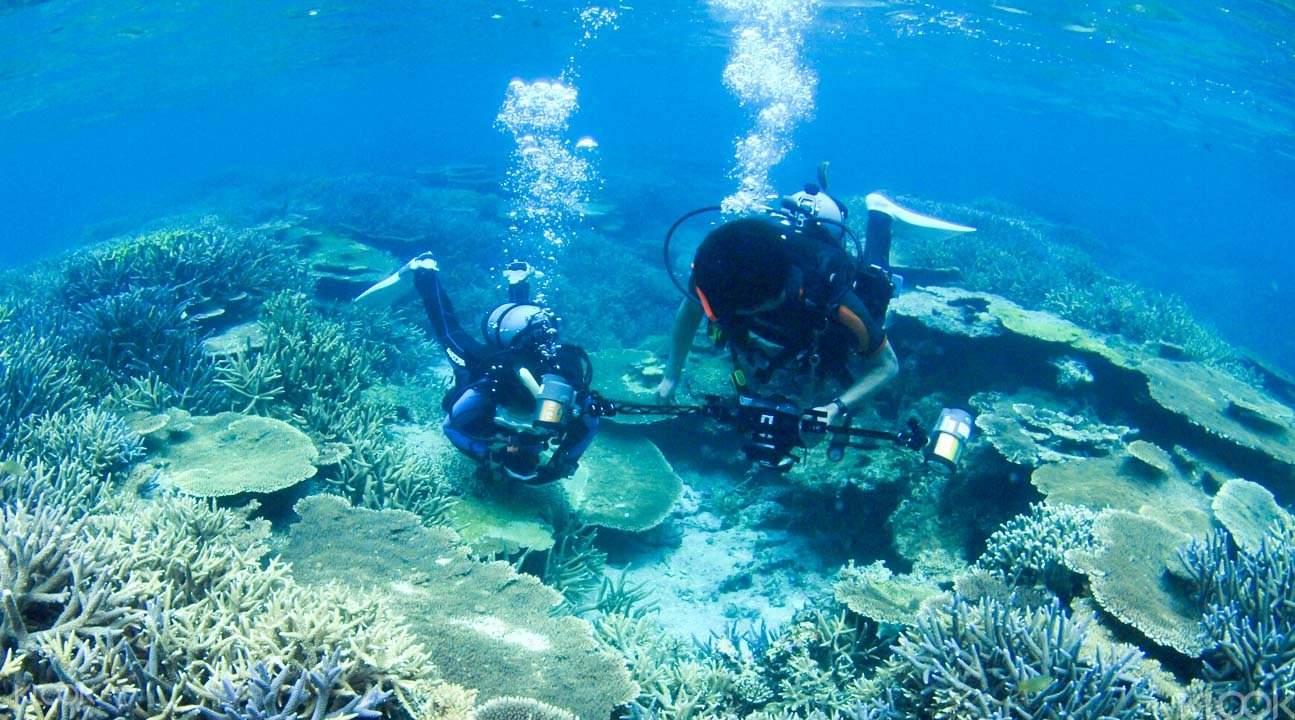 沖繩卡雅法海岸潜水2