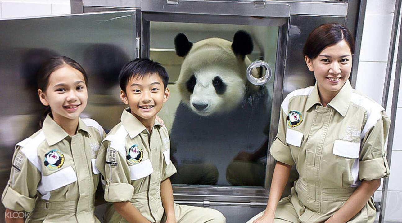 大小熊猫护理员