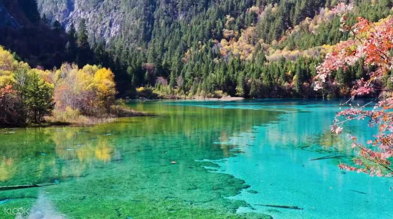 Jiuzhaigou National Park tour