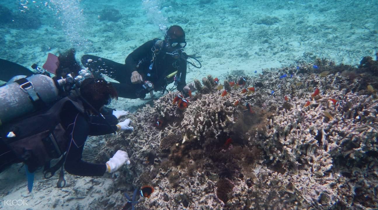 日本沖繩恩納村青之洞窟潛水體驗