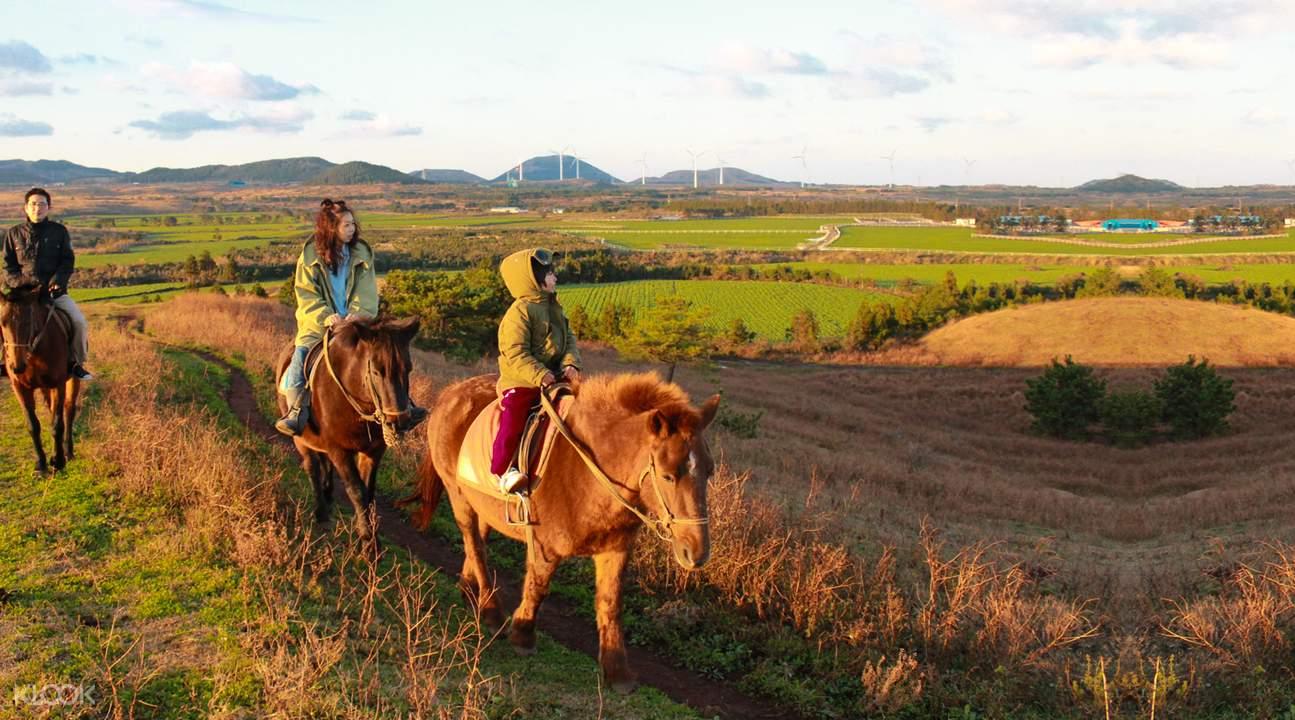 濟州島軛頭騎馬場
