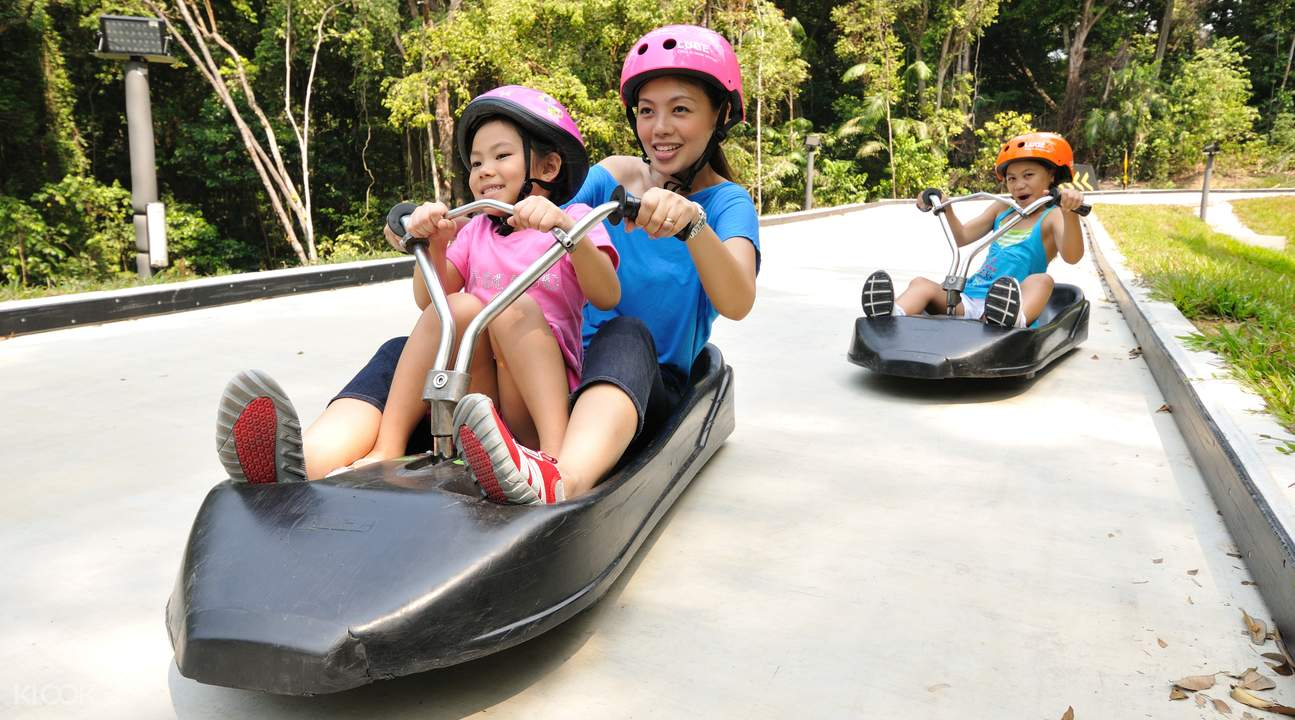 kids riding the luge