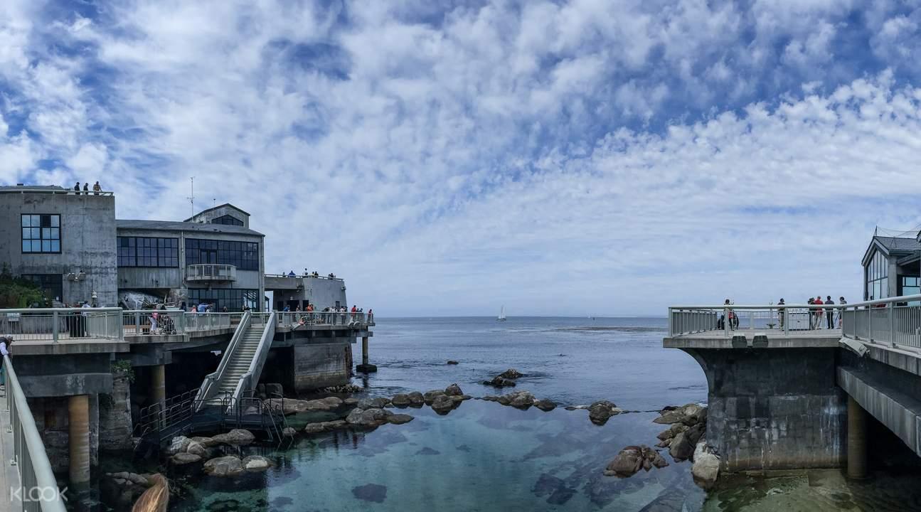 Monterey Bay Aquarium Admission Ticket San Francisco Usa