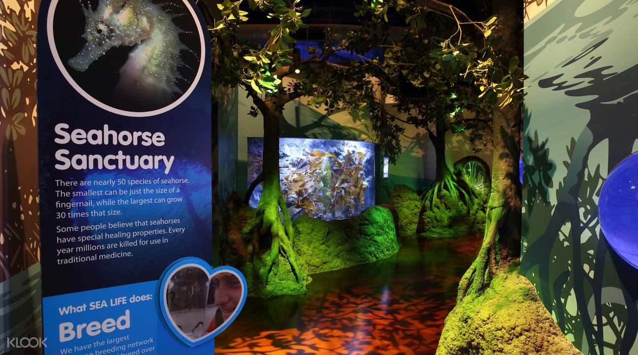 莫罗拉巴海洋生物水族馆