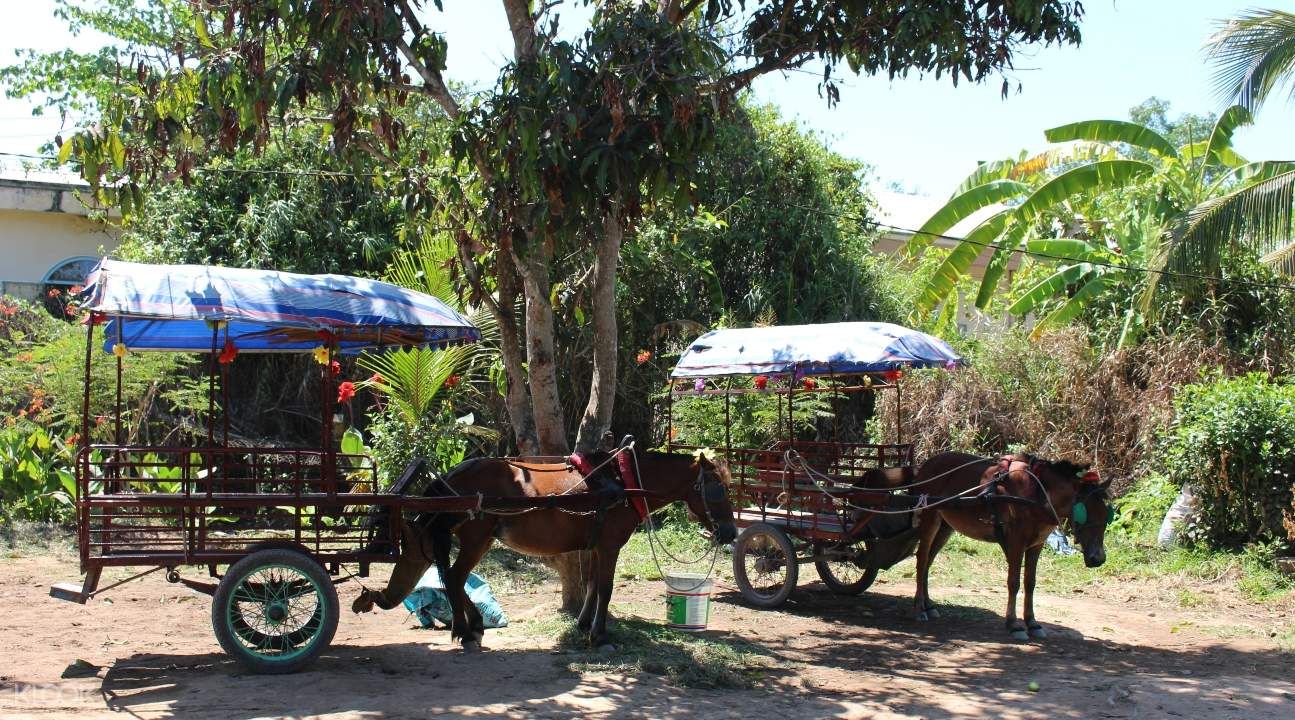 Hop on a horse cart and go sightseeing in one of the region's villages