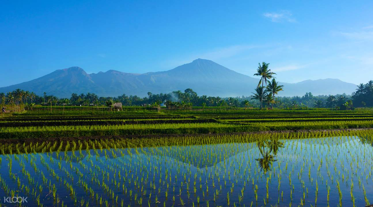 印尼第二高火山林賈尼火山 (Rinjani Volcano)