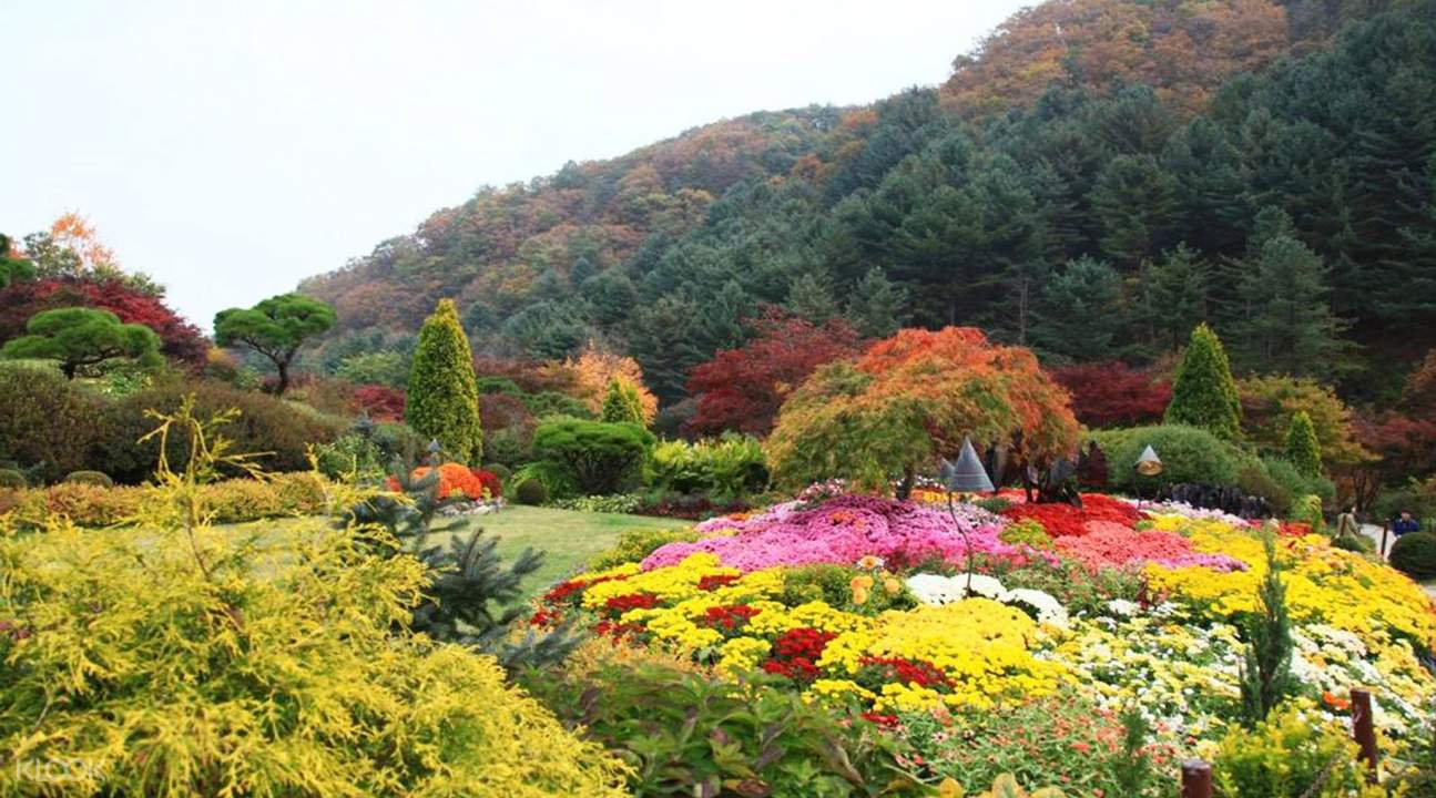 Natural scenery at the Garden of Morning Calm