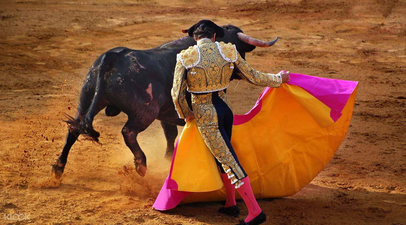 Traditional Bull FIghting (Goyesca bullfight)