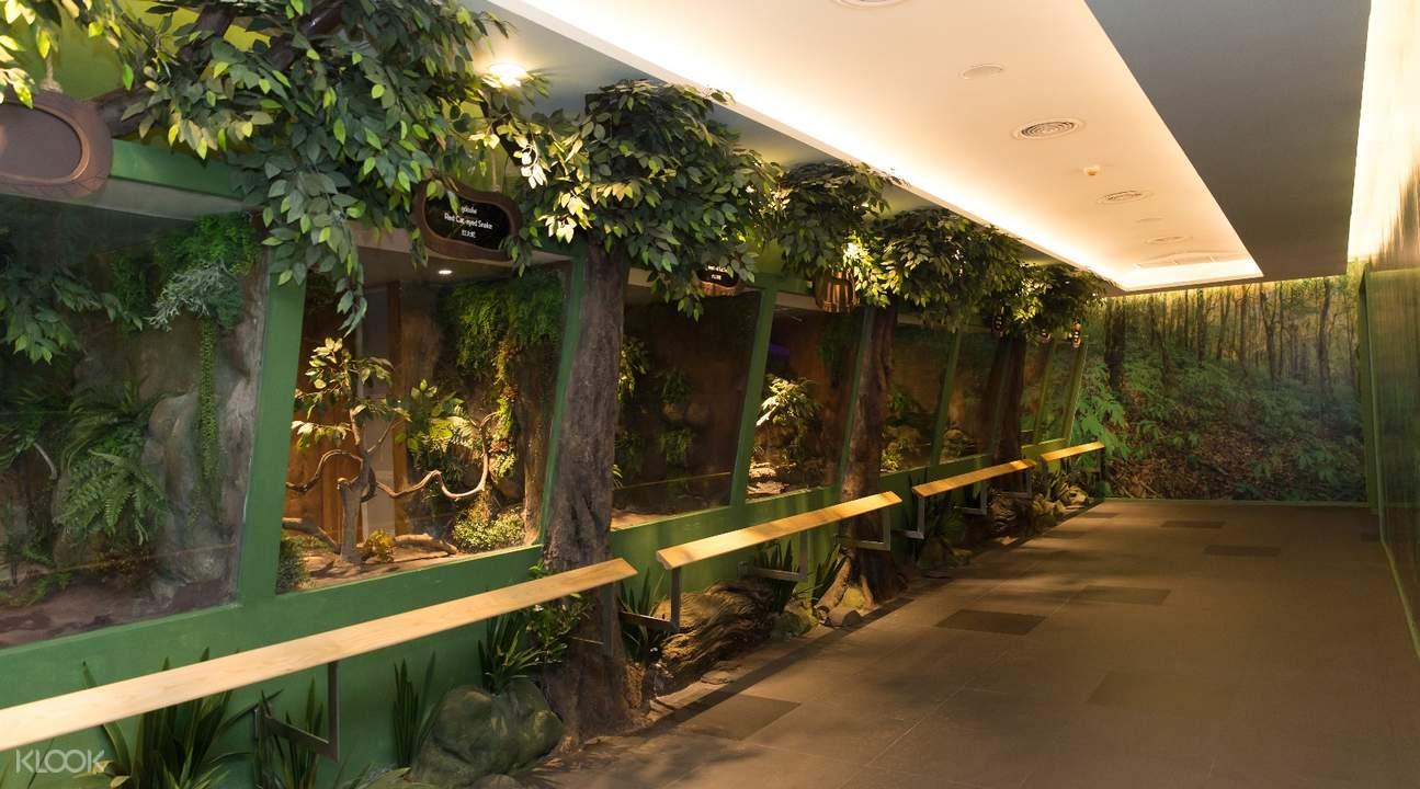曼谷暹罗蛇园门票