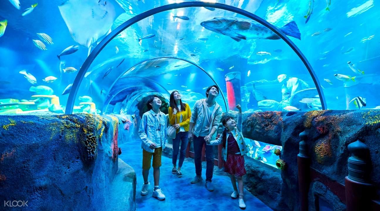 選擇樂高樂園和水族館套票,來體驗充實而又奇妙的旅程吧!