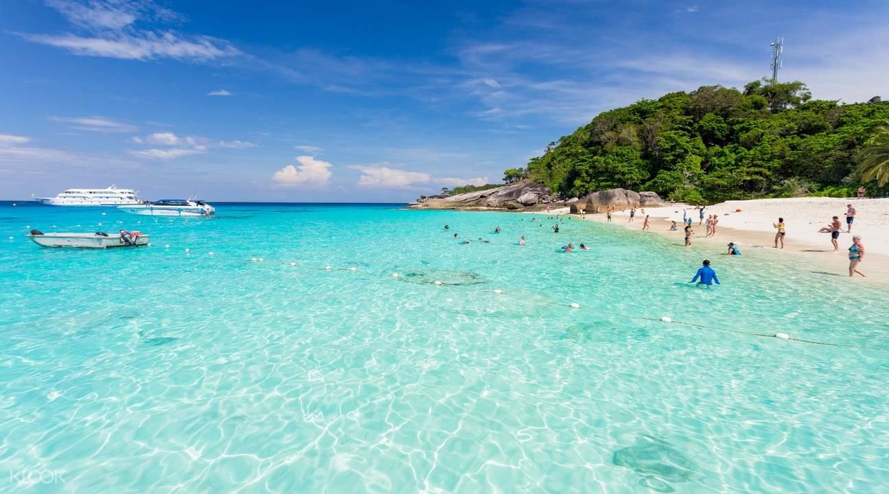 西密兰群岛浮潜一日游