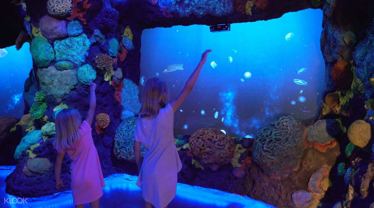 national geographic encounter ocean odyssey admission tickets