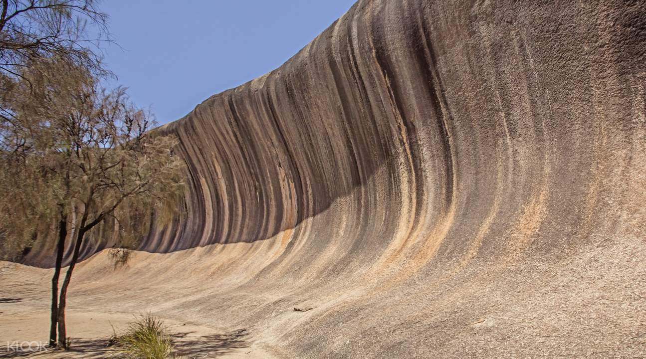 Wave Rock, York, Wildflowers & Aboriginal Culture