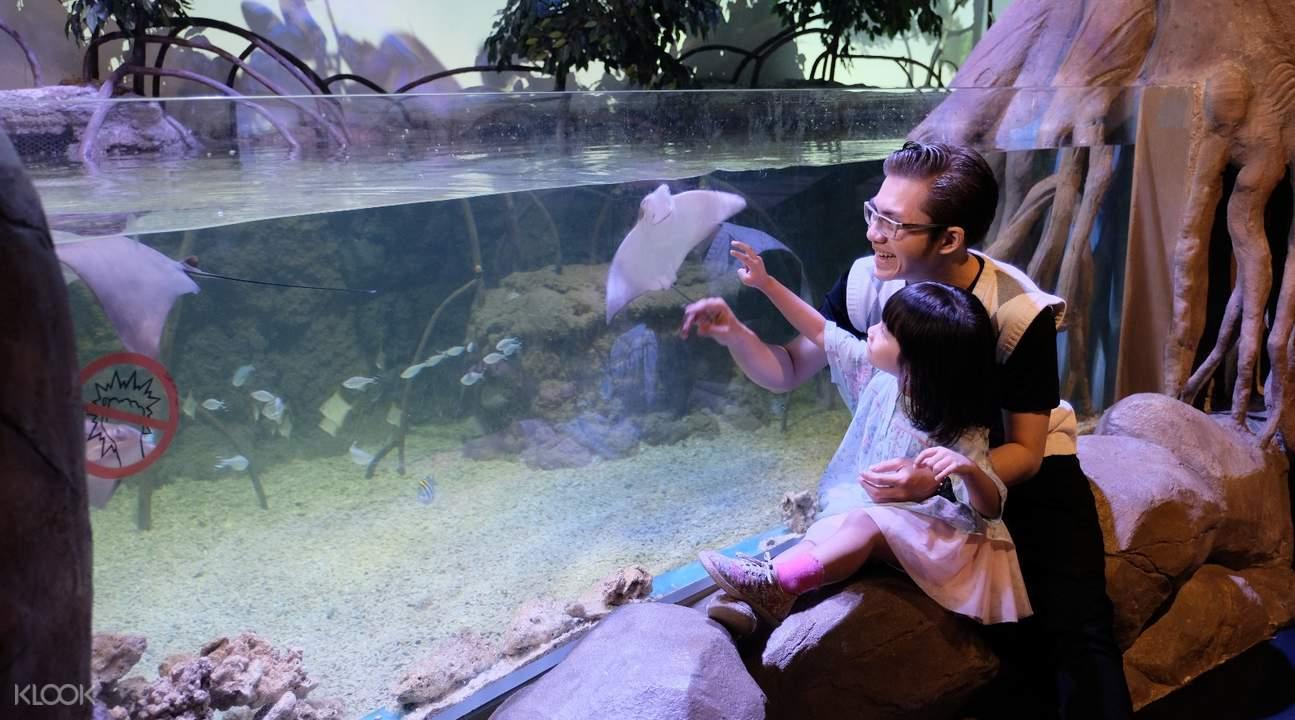 雅加達水族館