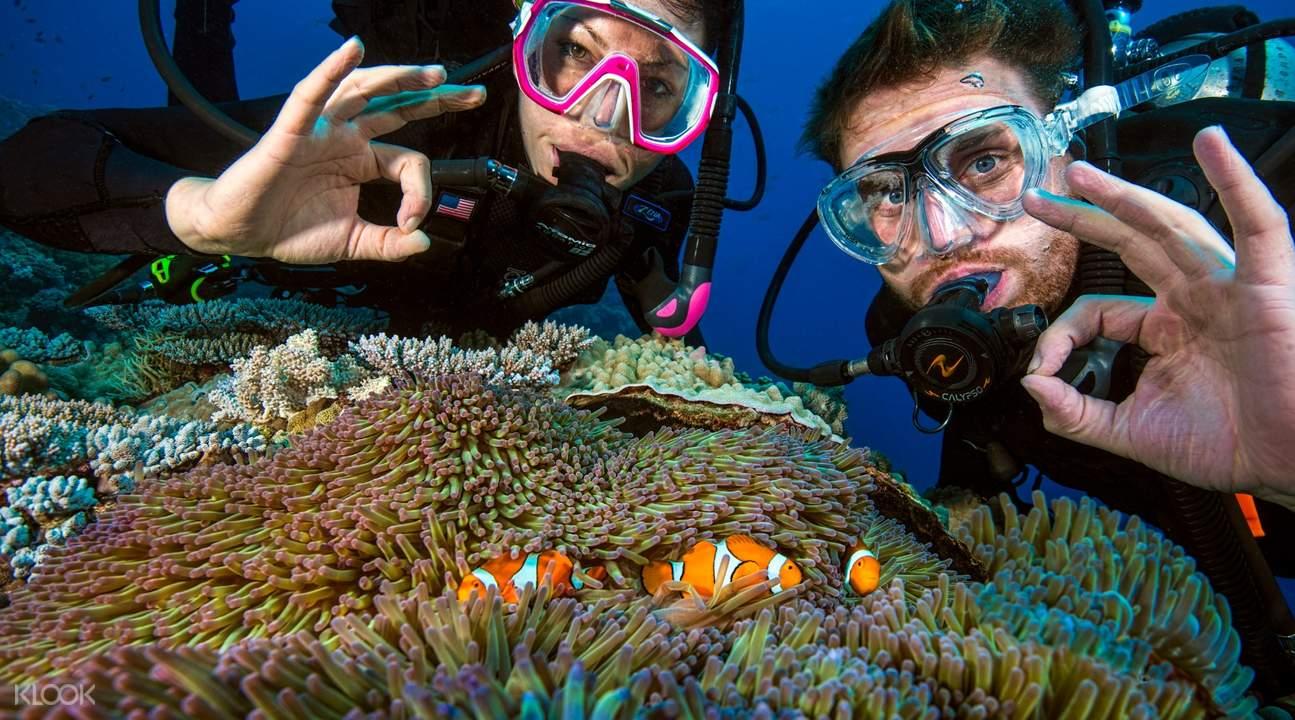 凱恩斯大堡礁PADI進階開放水域潛水訓練三日課程