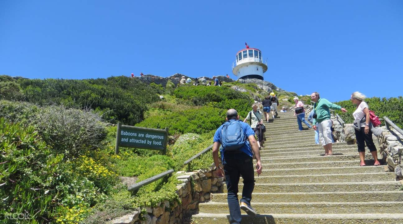 cape point lighthouse cape peninsula half day tour from cape town