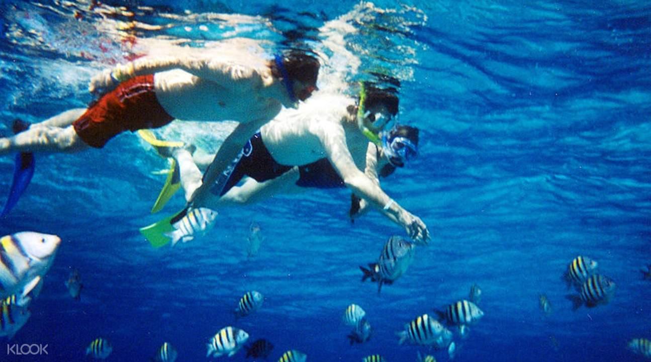 Maung Shwe Lay Snorkeling