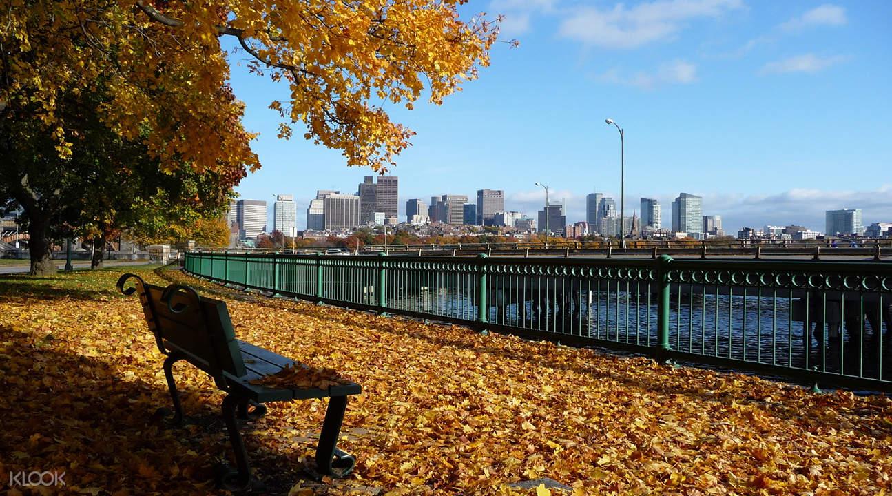 美國曆史探訪之旅:劍橋,列克星敦以及康科德(波士頓出發)