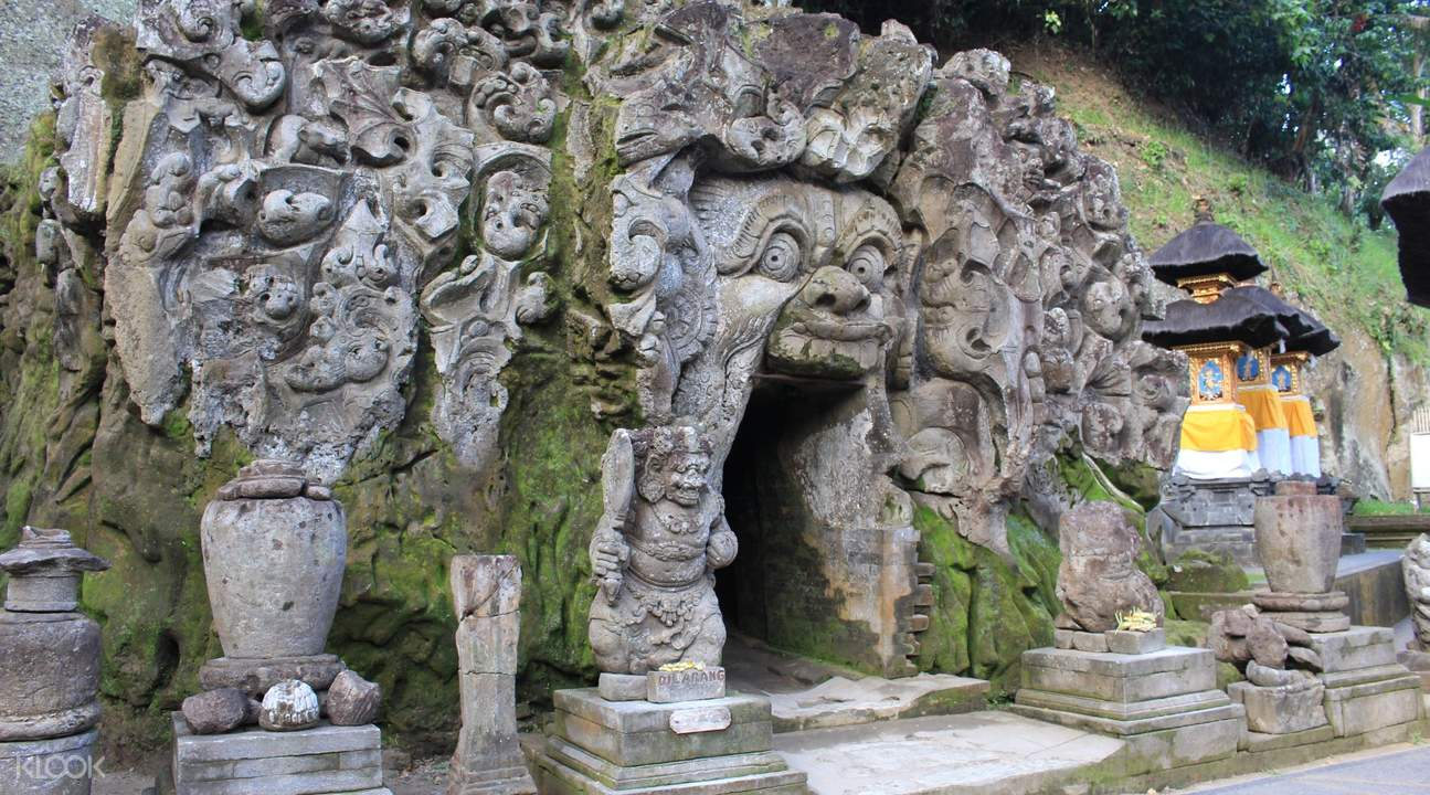 Gao Gajah Tegelalang Rice Field and Monkey Forest Full Day Tour in Ubud