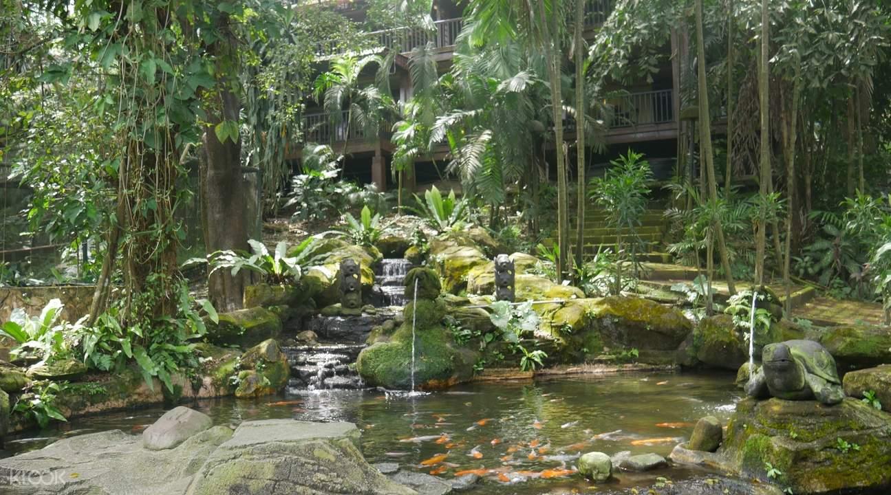 吉隆坡雀鸟公园
