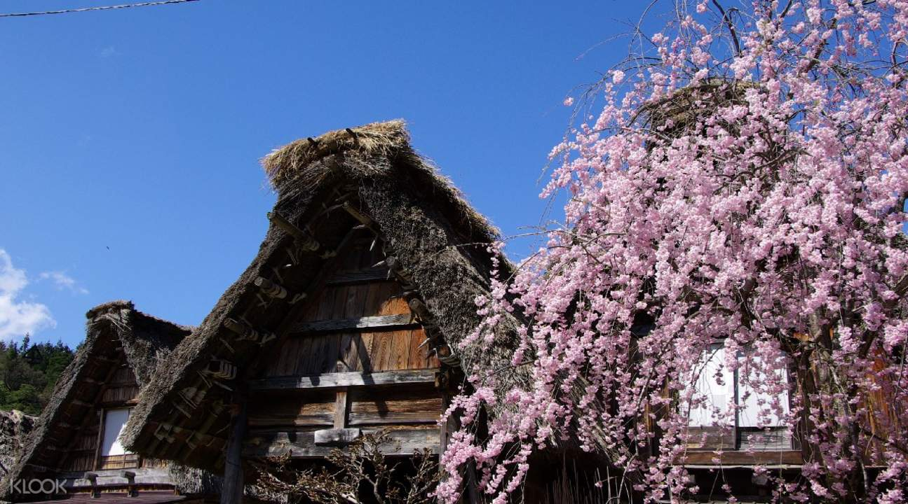 shirakawa village nagoya