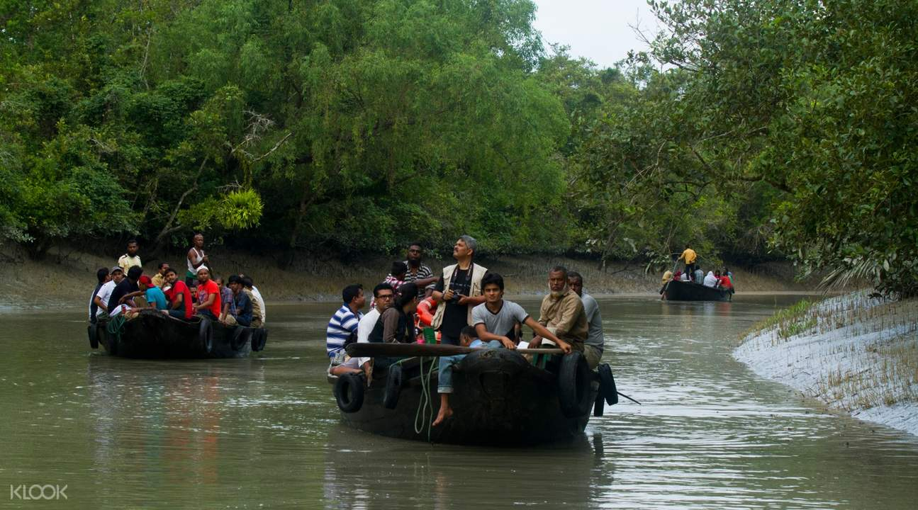 day tour sundarbans from kolkata