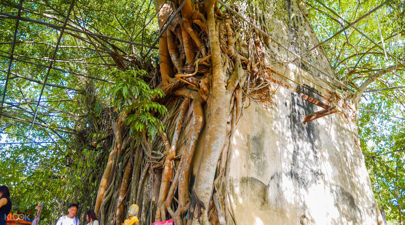Wat Bang Kung Amphawa