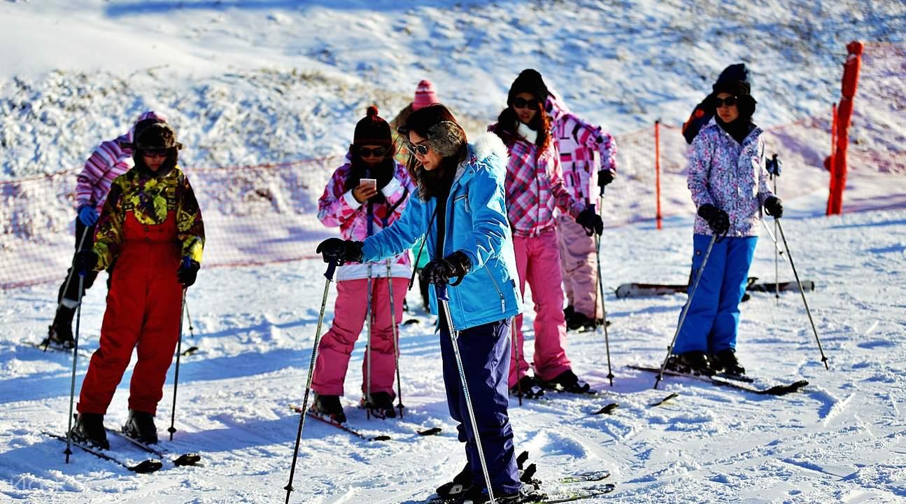 三天两夜 洪川大明度假村VIVA滑雪节