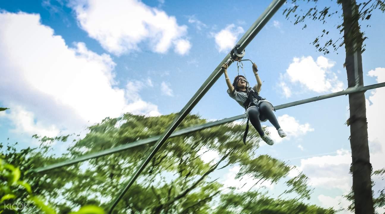 zipline rollercoaster jungle flight