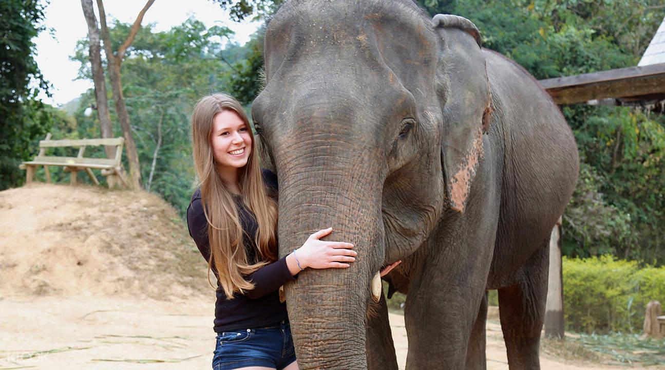Elephant village half day visit