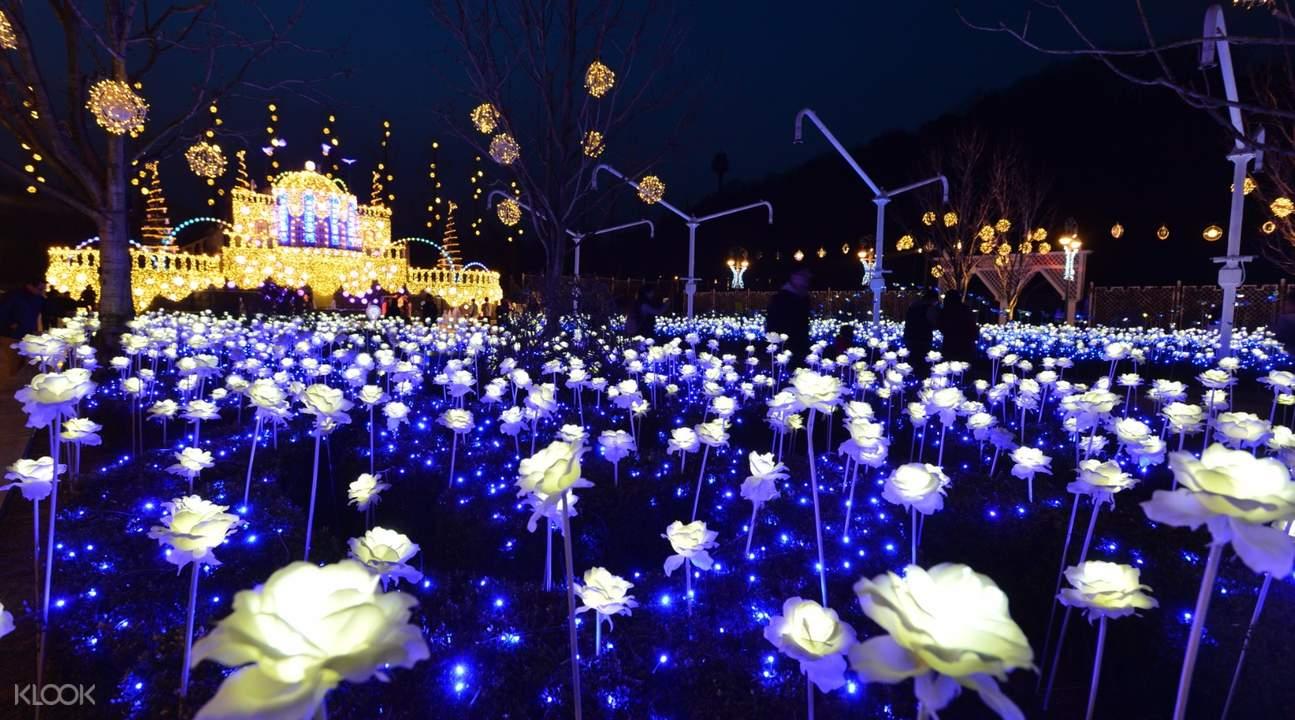 爱乐公园夜景