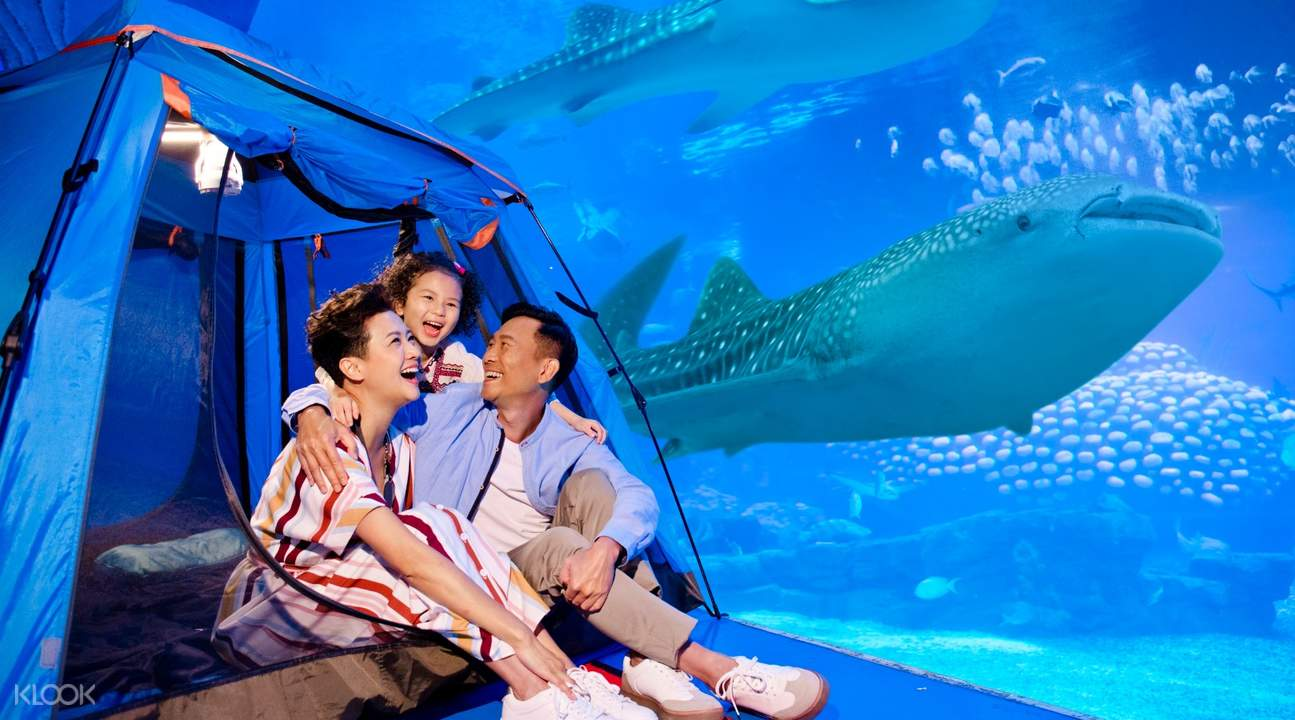 family camping by the aquarium