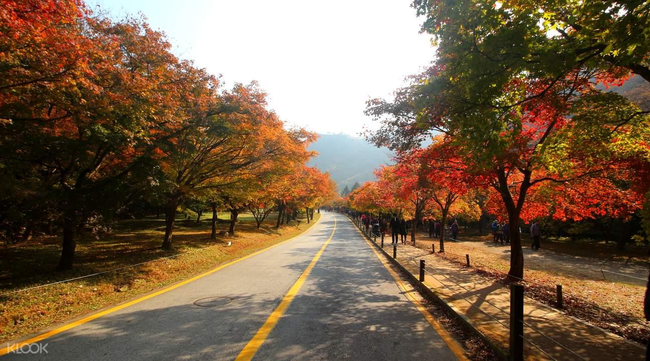 内藏山国立公园