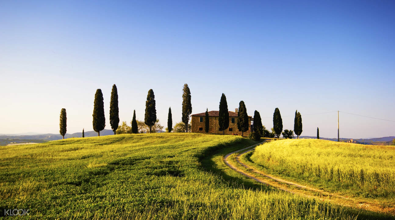 guided day tours to chianti from florence