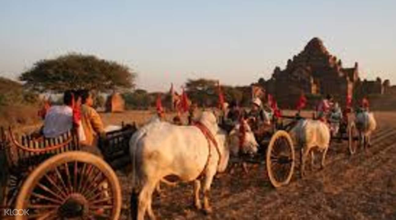 蒲甘文化之旅