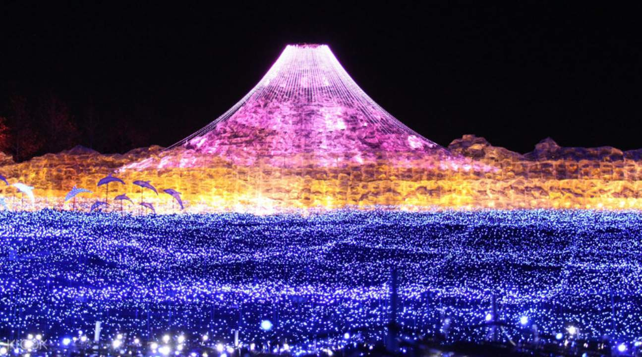 nabana no sato illumination with mountain and field of flowers