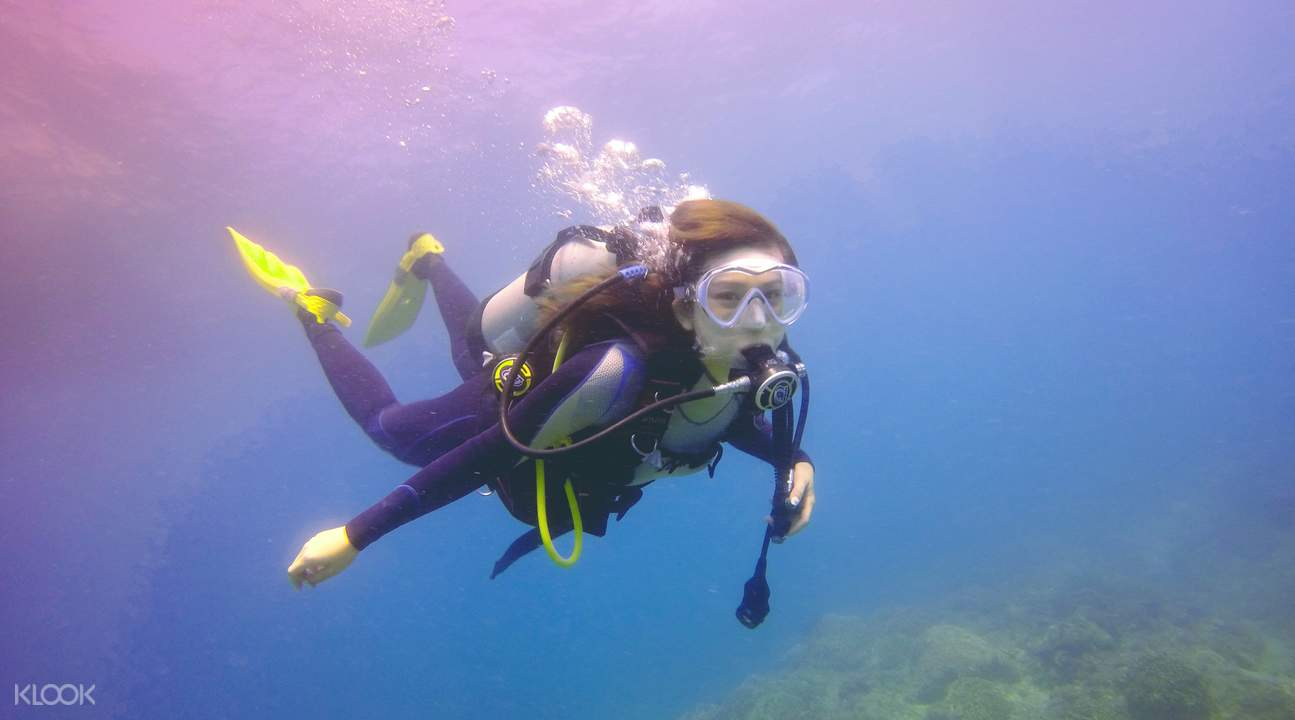 Scuba Diving in Northeast Bitou Cape