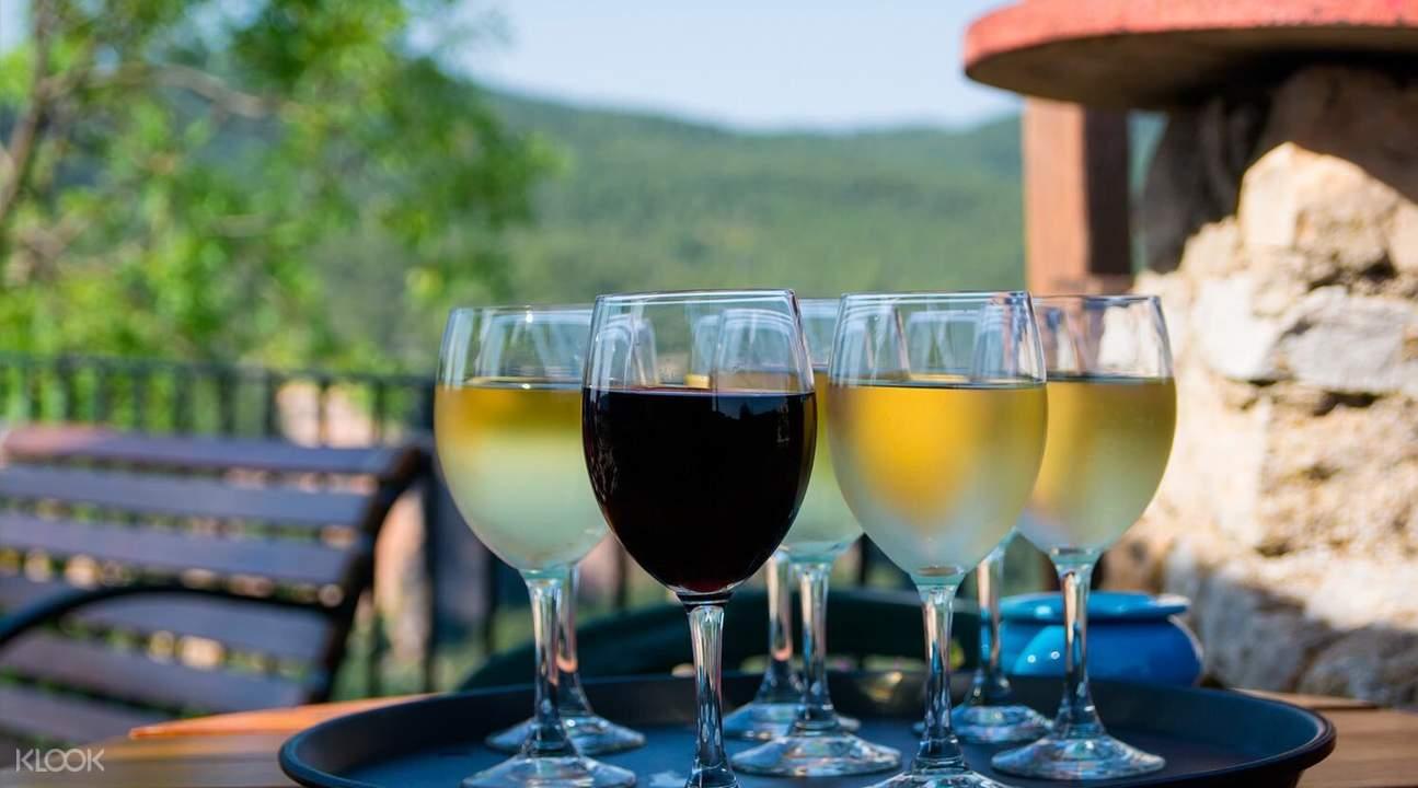 巴塞羅那葡萄酒莊,巴塞羅那卡瓦酒莊,巴塞羅那葡萄酒體驗,巴塞羅那卡瓦酒,