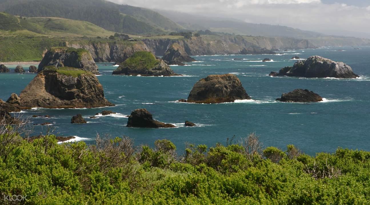 加州一號公路一日遊(加州海岸線&蒙特雷&聖塔克魯茲&亨利考威爾紅杉州立公園) 舊金山出發