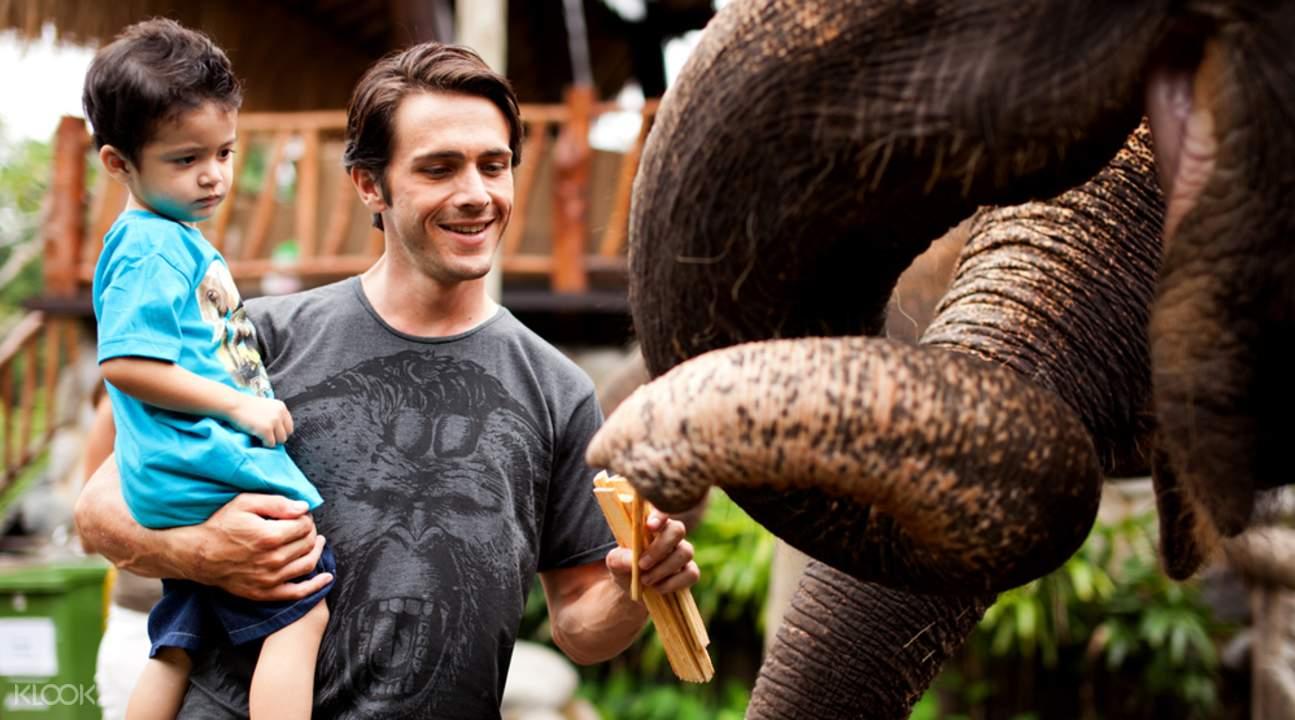 巴厘島動物園