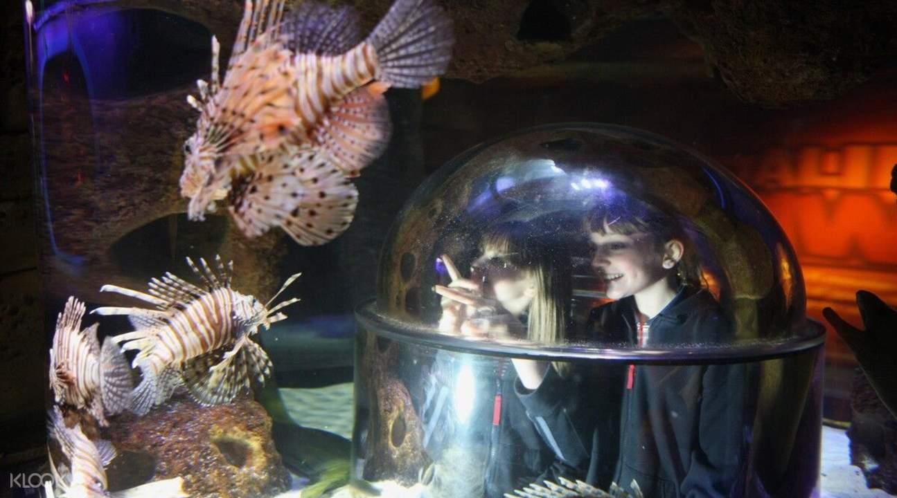 奥兰多海洋生物水族馆