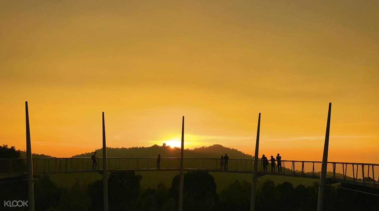 sunset in the habitat penang hill canopy walk