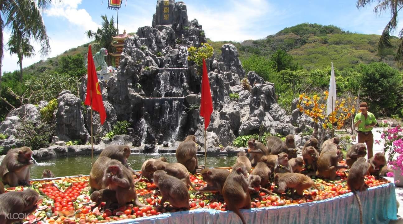 Monkeys at Na Phu