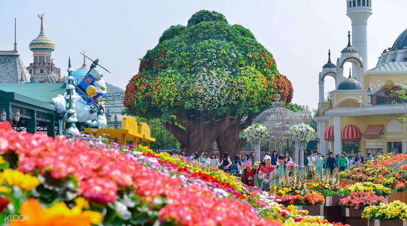 Everland Reviews - Klook