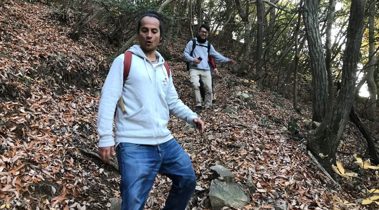 people walking along a trail in Mount Rokko's forest