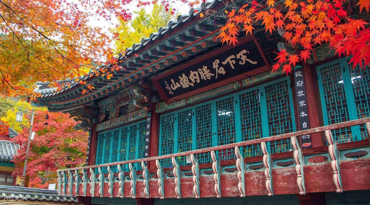 naejangsan national park from seoul, naejangsan national park tour, naejangsan national park autumn, naejangsan temple