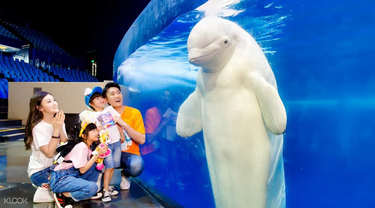 Ocean Park in China