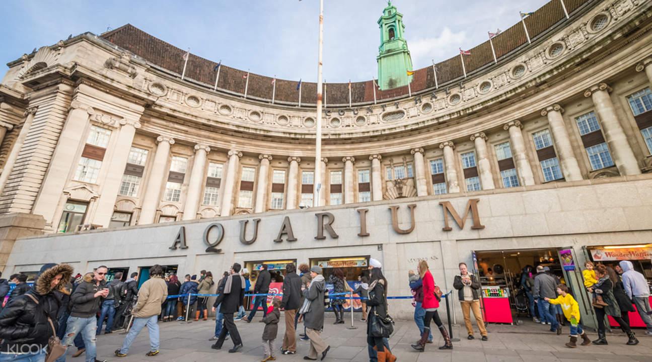 伦敦海洋生物水族馆门票